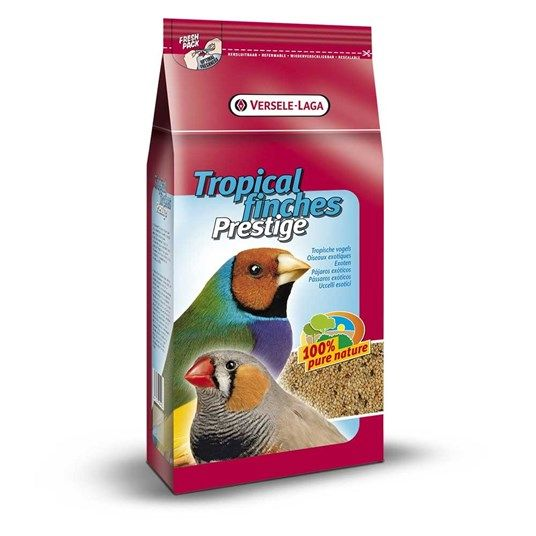 Verselelaga  Tropical Finches 500 G.