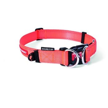 Ezydog Collar Double Up Medium Köpek Boyun Tasması (Turuncu)